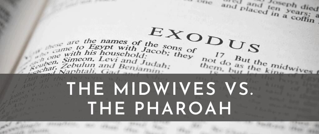 MIDWIVES PHAROAH (1)